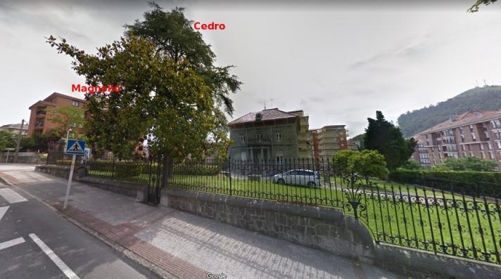 CasaGarmaAntes_googleMaps4_magnolioCedro