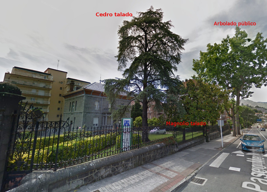 CasaGramaAntes_googleMaps2_cedro_magnolio